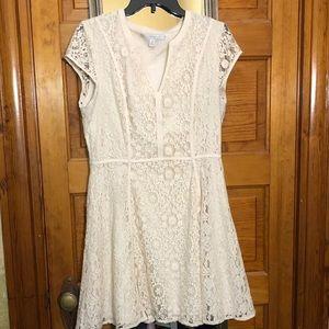 LC Cream Lace Dress
